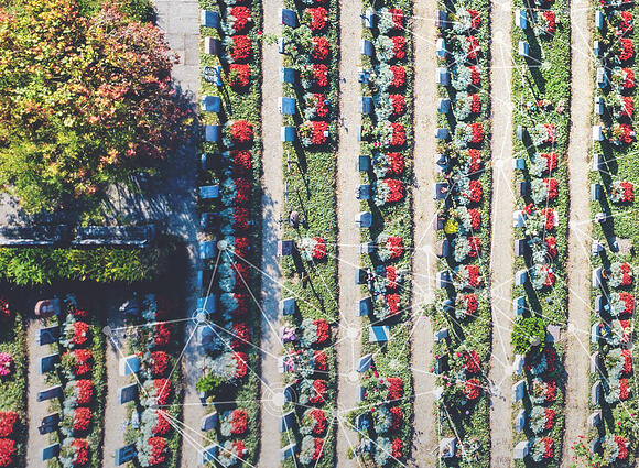 Cemetery aerial