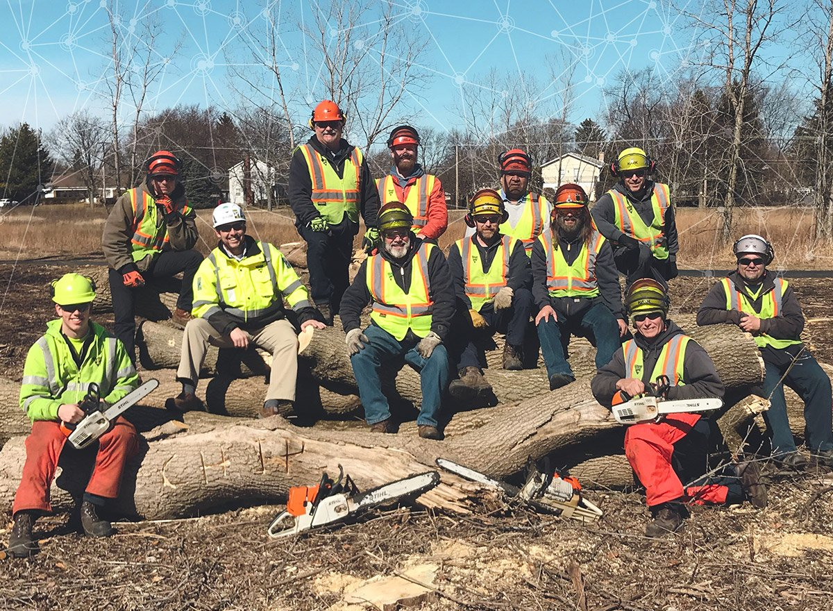 Village of Buffalo Grove forestry team