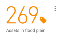 269 assets in flood plain