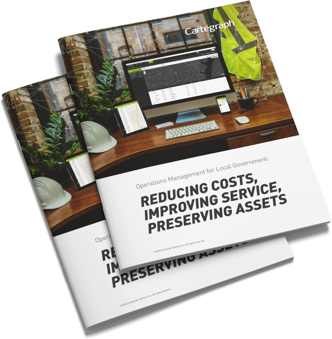 reducing-costs-whitepaper-mockup