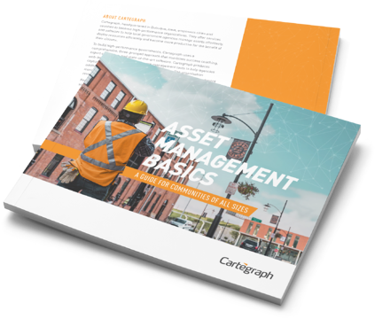 Asset Management ebook for Government
