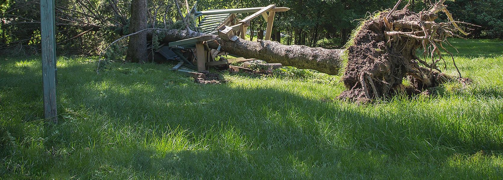 hurricane response and storm recovery_Arlington, TX